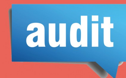 Microsoft asking to audit licenses